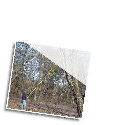 This operator is trimming at 30ft. The natural weight of the tree pole saw provides enough down force for fast trimming without undue stress. You do not need to apply pressure to the rigid poles for the cut.