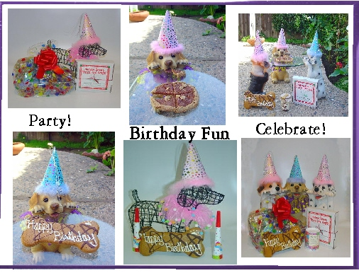 Have a dor or pet birthday party.