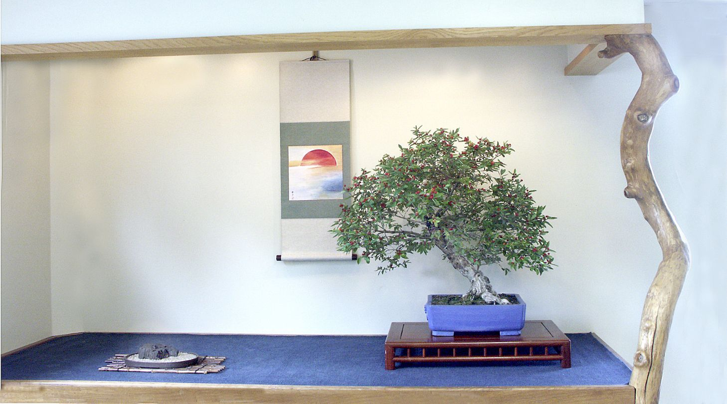 Summer display of Honeysuckle in studio alcove