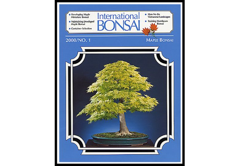 Practical Guide To Care Creating And Appreciating Bonsai