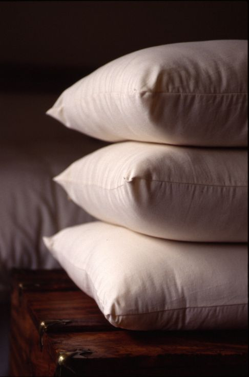 Organic Cotton Wool Pillows -  Holy Lamb Organics