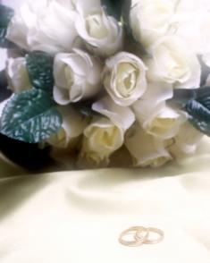 New Jersey Wedding Ceremonies, New Jersey Weddings, New Jersey Wedding, NJ Wedding Planning, nj weddings, nj wedding, new jersey wedding planning