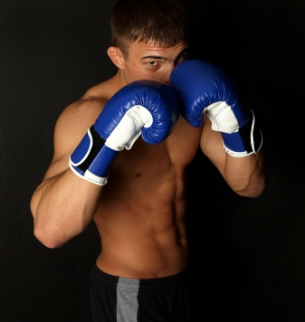 Boxing Gloves - Boxer